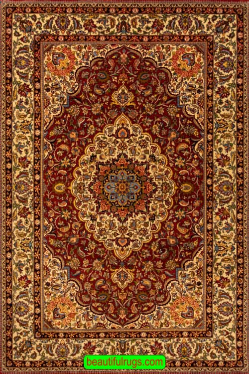 Handmade Persian Bakhtiari Rug, Rustic Red Traditional Design Rug, size 6.10x10, main image